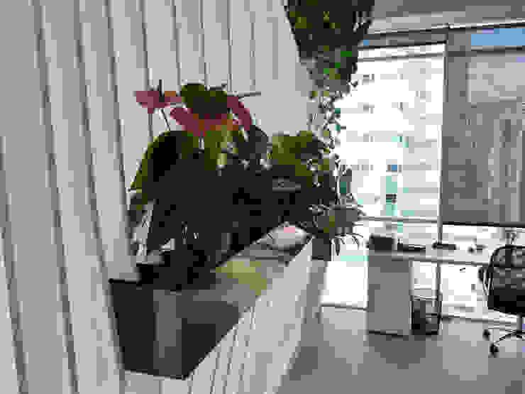 Oficinas Easy Legal de interior137 arquitectos Moderno