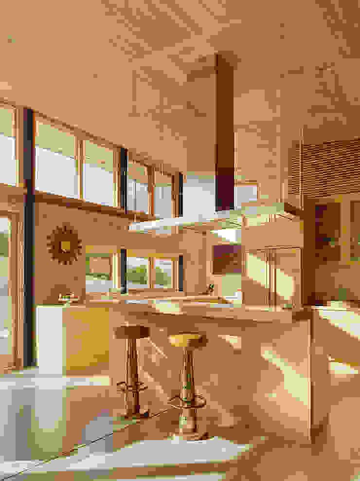 Caterpillar House Modern Kitchen by Feldman Architecture Modern