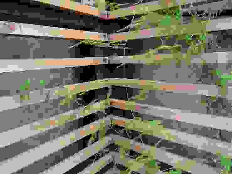 Quincho Domo + Paisajismo Jardines de estilo rústico de DOMOTERRA LIMITADA Rústico Madera Acabado en madera