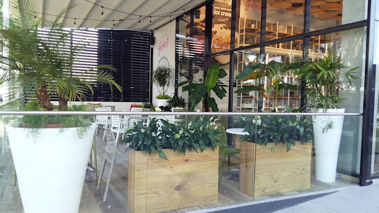 GELARTI AT COSTA DEL ESTE—PANAMA CITY Modern Gym by TARTE LANDSCAPES Modern
