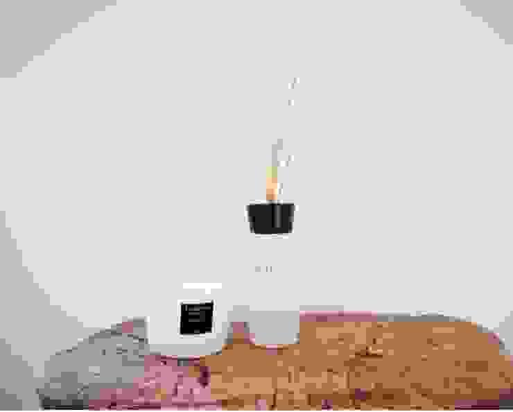 Baobab Candles van Wood Creations Landelijk