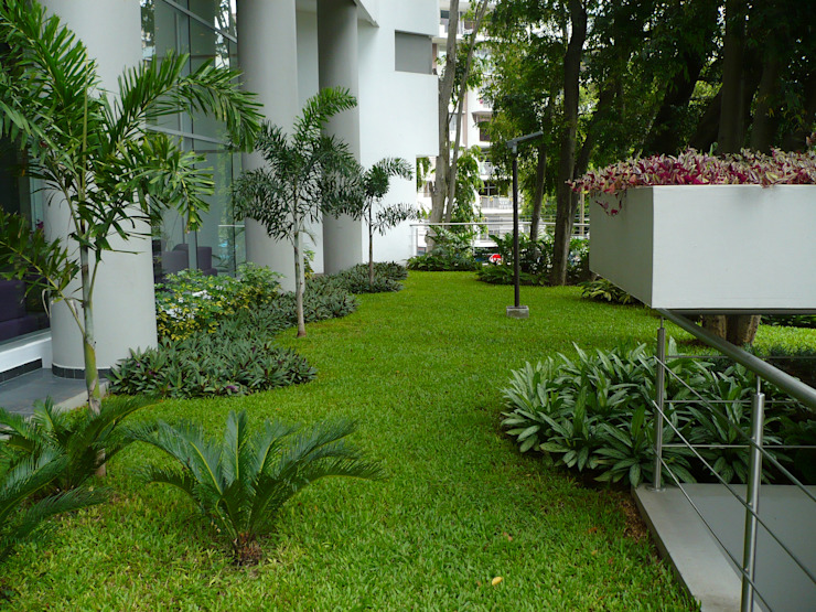 LUXOR TOWERS - PANAMA CITY Tropical style garden by TARTE LANDSCAPES Tropical