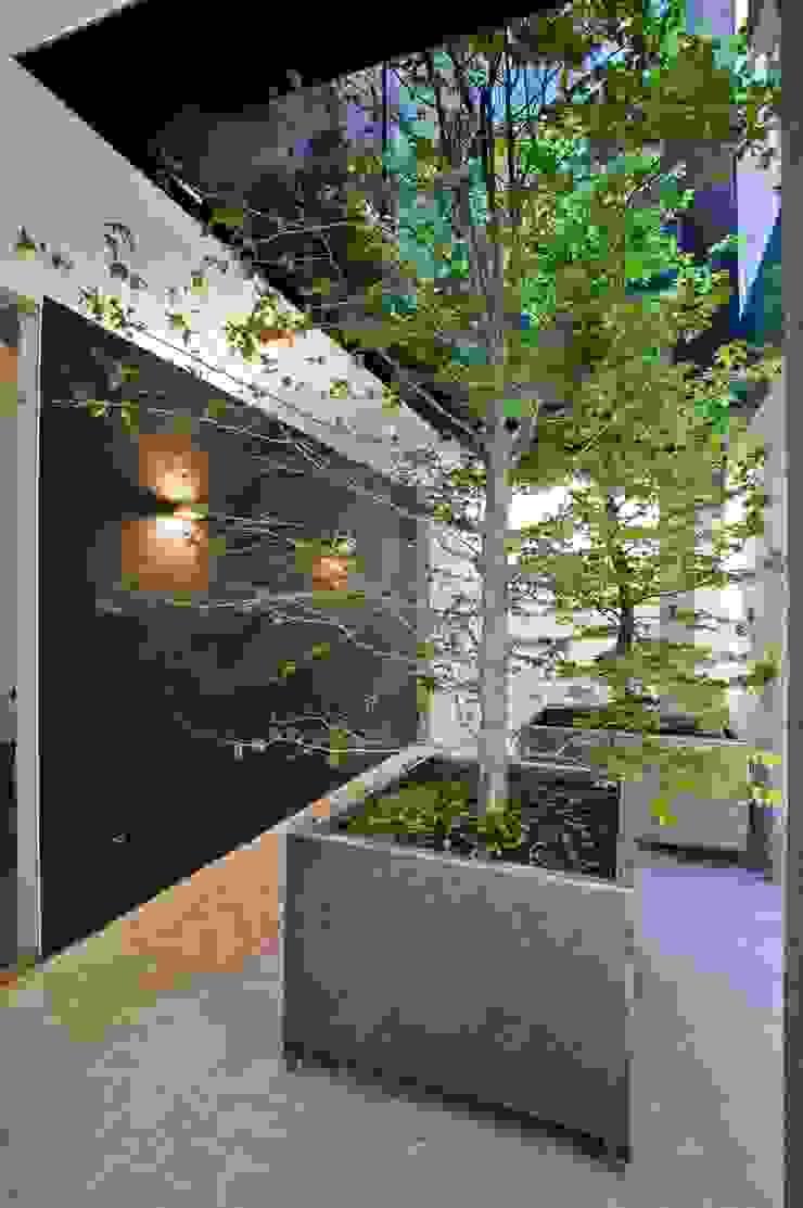 SAN VICENTE FERRER 78 Pasillos, vestíbulos y escaleras de estilo industrial de james&mau Industrial