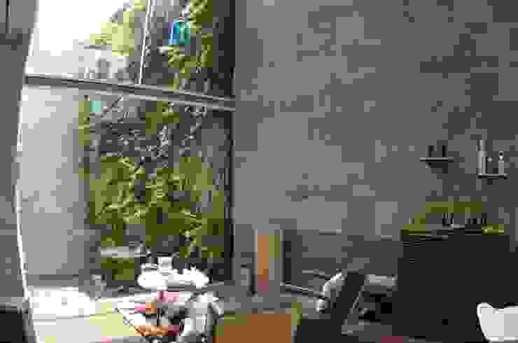 Muro Verde Jardines en la Montaña:  de estilo tropical por Regenera Mx - Fábrica Ecológica, Tropical