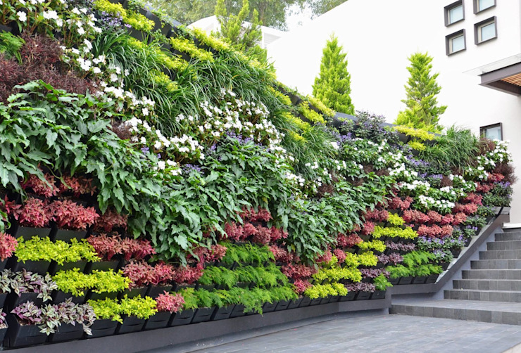 Jardines de estilo  por Regenera Mx - Fábrica Ecológica, Moderno