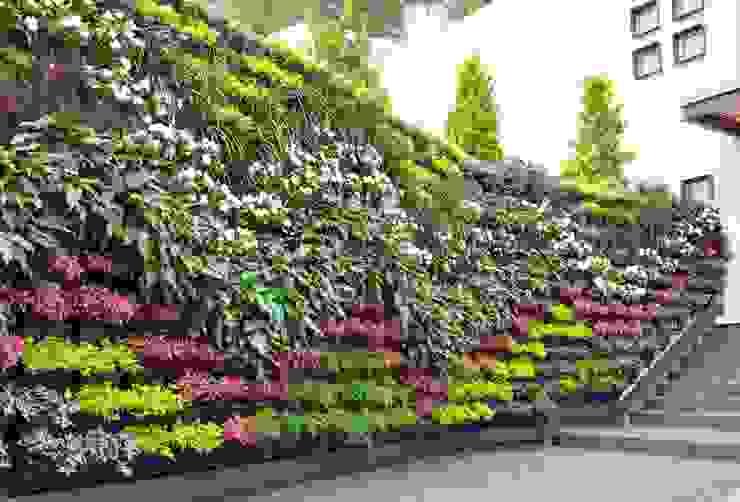 Modern Garden by Regenera Mx - Fábrica Ecológica Modern