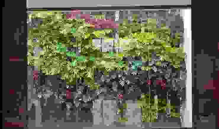 Muro Verde Pedregal Océano de Regenera Mx - Fábrica Ecológica Moderno