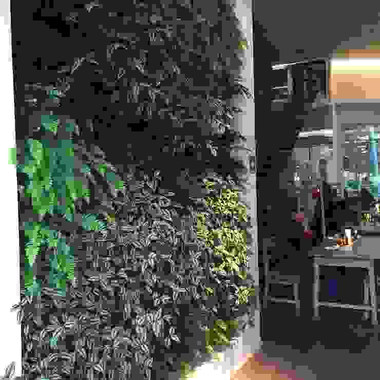 Muro Verde Vapiano Restaurant de Regenera Mx - Fábrica Ecológica Moderno