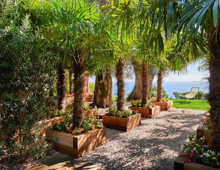 Casa Sant Feliu de Guíxols SOLER-MORATO ARQUITECTES SLP Jardines de estilo mediterráneo Bambú Verde