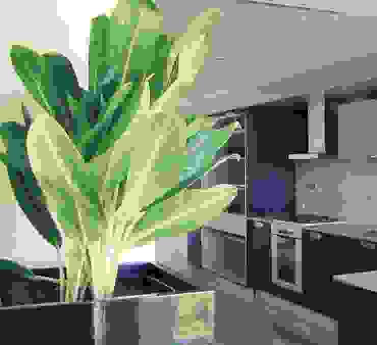 Vivienda PG, Neuquén Cocinas modernas: Ideas, imágenes y decoración de ARKIZA Moderno