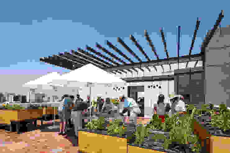 Trama Arquitectos Jardin moderne