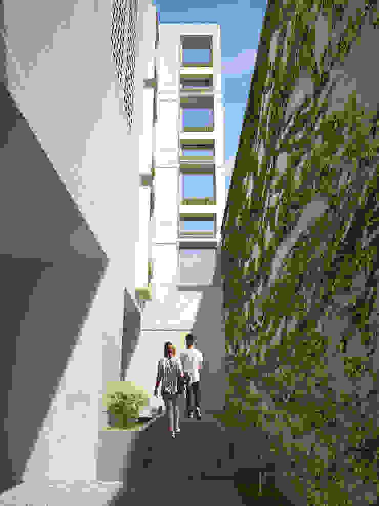 Vista de acceso Pasillos, vestíbulos y escaleras minimalistas de HMJ Arquitectura Minimalista