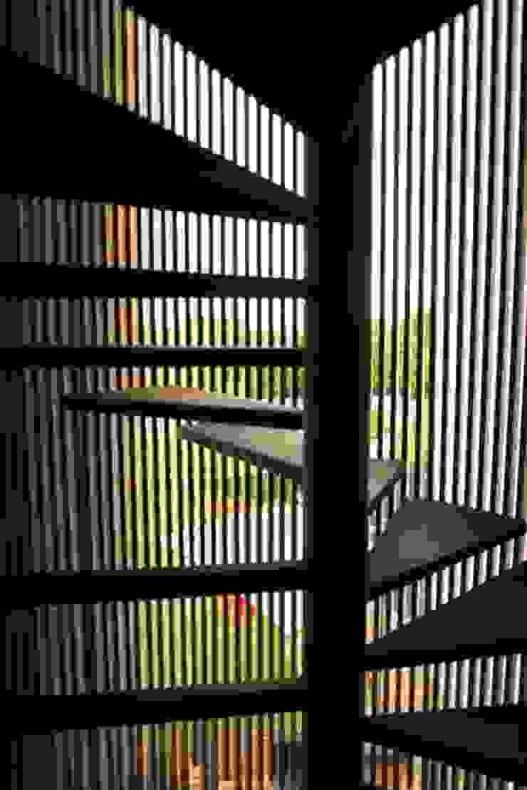 OM Casas modernas de ARKHAM PROJECTS Moderno