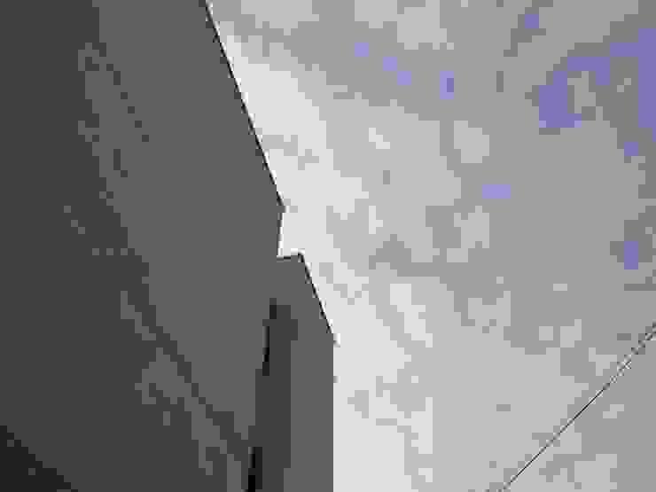 白河W宅 現代房屋設計點子、靈感 & 圖片 根據 兆博建築 現代風