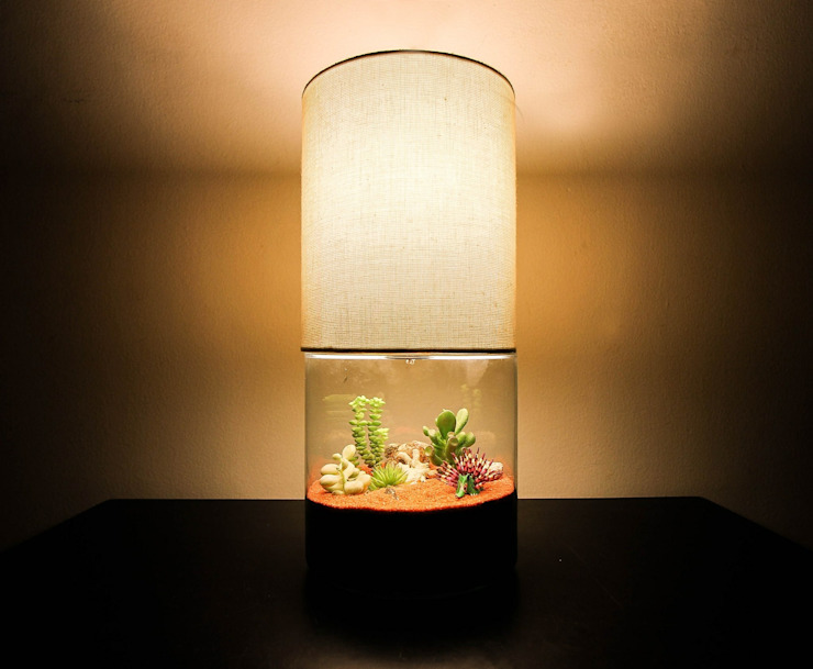 Terrarium Lamp - Large homify HouseholdPlants & accessories