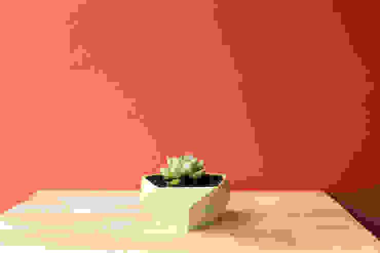 .Poly de Fabric3D Minimalista