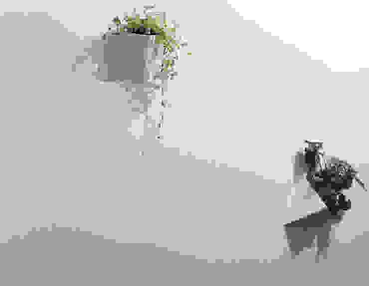 minimalist  by Fabric3D, Minimalist