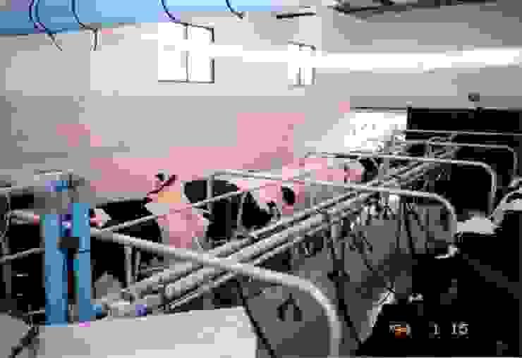 Tambo vacuno Centros de exposiciones de estilo industrial de Valy Industrial Cerámico