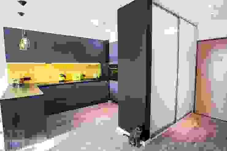 Mieszkanie z trzema kotami Nowoczesny korytarz, przedpokój i schody od Limonki Studio Wojciech Siudowski Nowoczesny