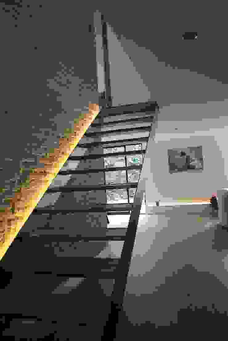 Ingresso, Corridoio & Scale in stile moderno di TARE arquitectos Moderno