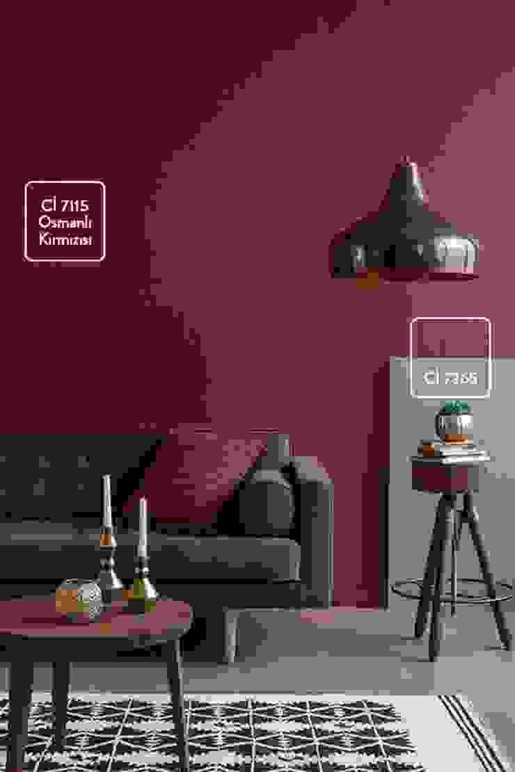 Polisan Home Cosmetıcs Renk Danışmanlığı colourfıt
