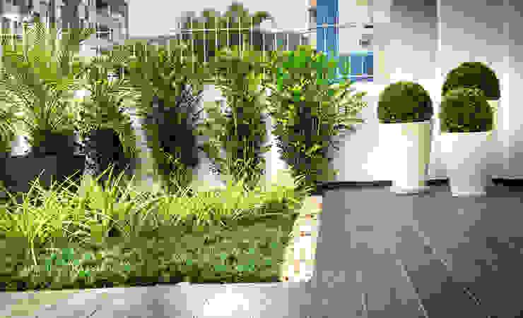 Jardim Condomínio em Florianópolis Jardins modernos por Grama Arquitetura Moderno