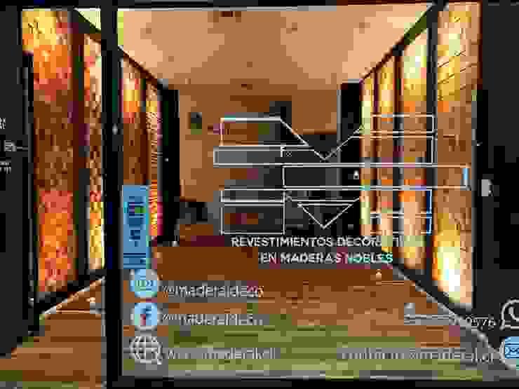 Showroom Maderal Paredes y pisos modernos de Maderal Moderno Madera Acabado en madera