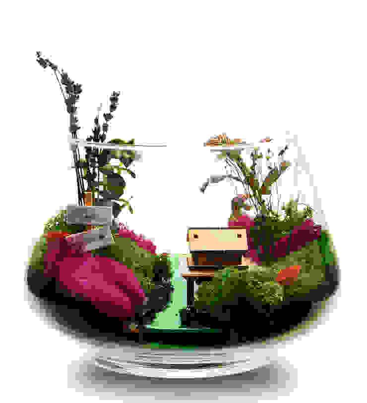 tropical  by Bahçehane, Tropical Glass