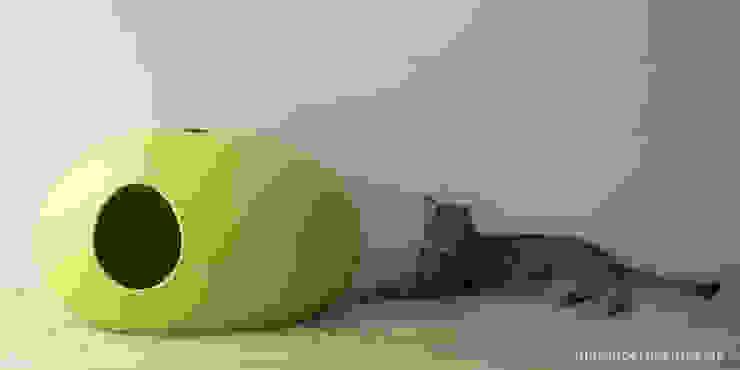 Moderne Katzentoilette Poopoopeedo: modern  von DIE MODERNE KATZE ®,Modern Kunststoff Braun