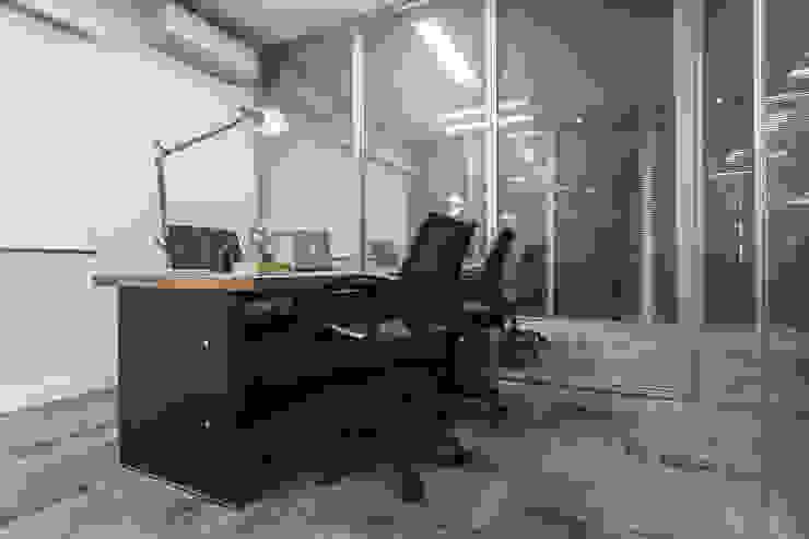Oficinas y bibliotecas de estilo moderno de VERONA CARPETES E VINILICOS Moderno