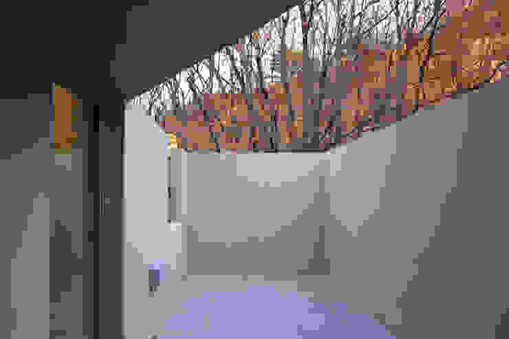 Modern Terrace by supa schweitzer song Modern