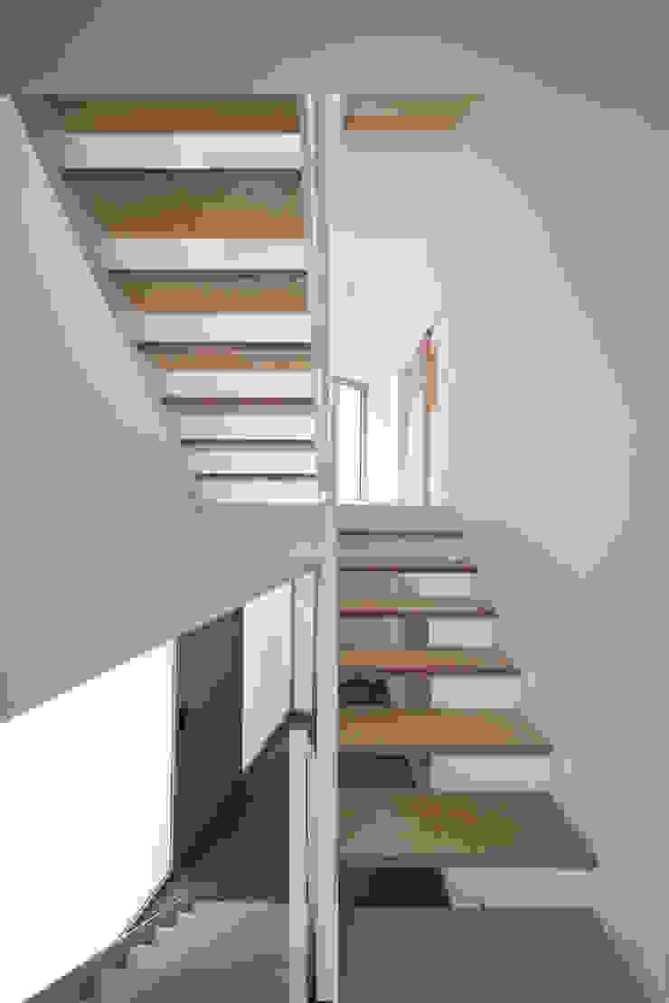 Modern corridor, hallway & stairs by supa schweitzer song Modern