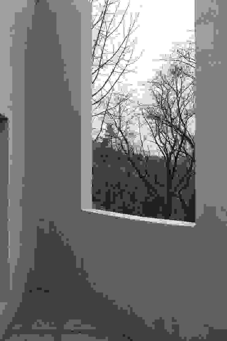 Modern windows & doors by supa schweitzer song Modern