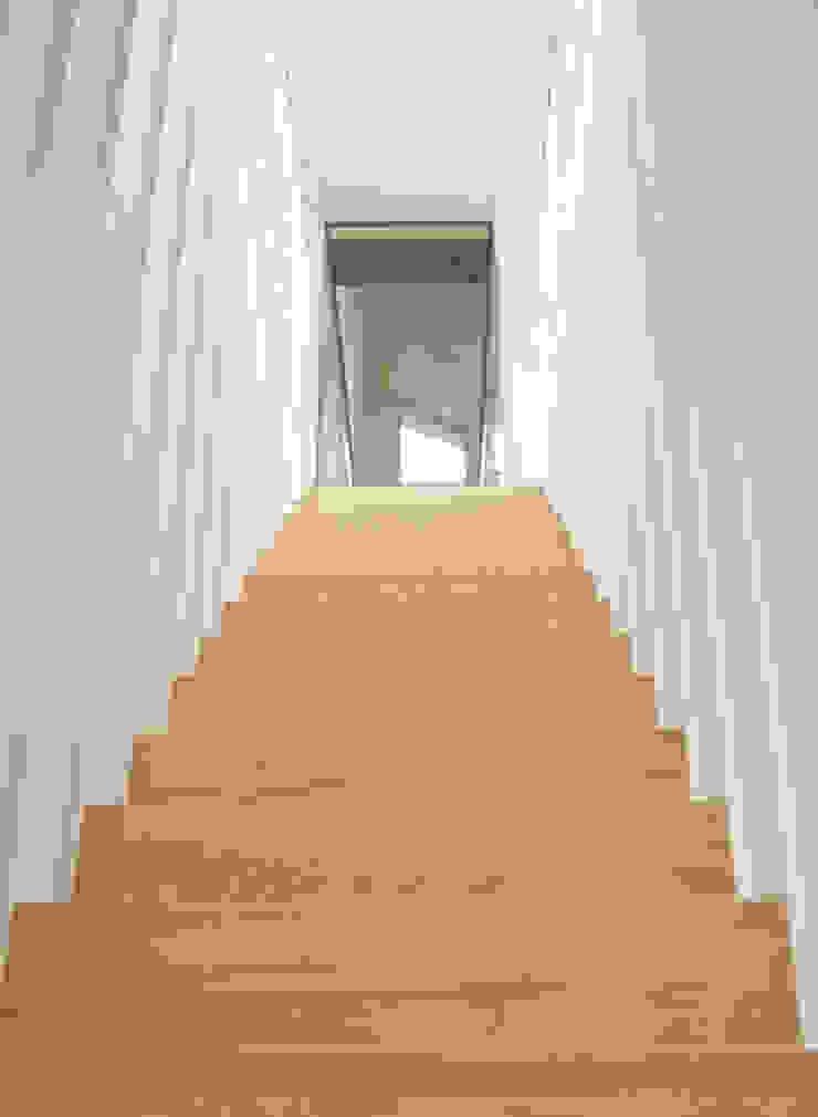 Z-trap Moderne gangen, hallen & trappenhuizen van Joyce Flendrie | Interieur & Design Modern