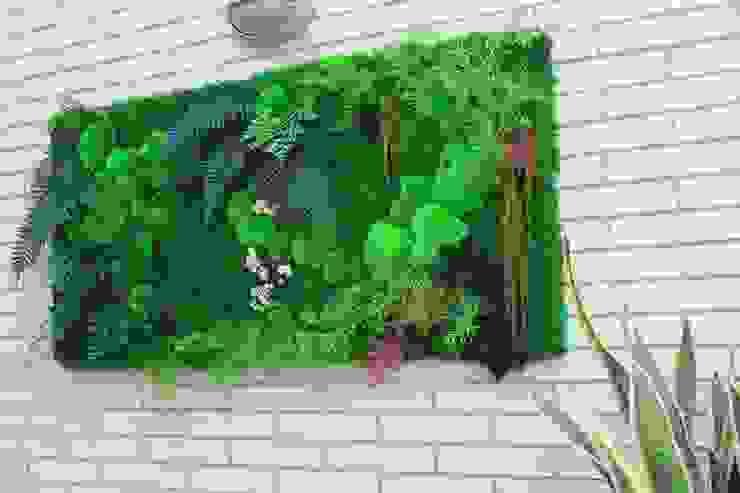 Jardin de style  par homify, Moderne