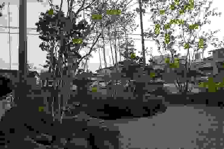 Jardines de estilo asiático de 田村建築設計工房 Asiático