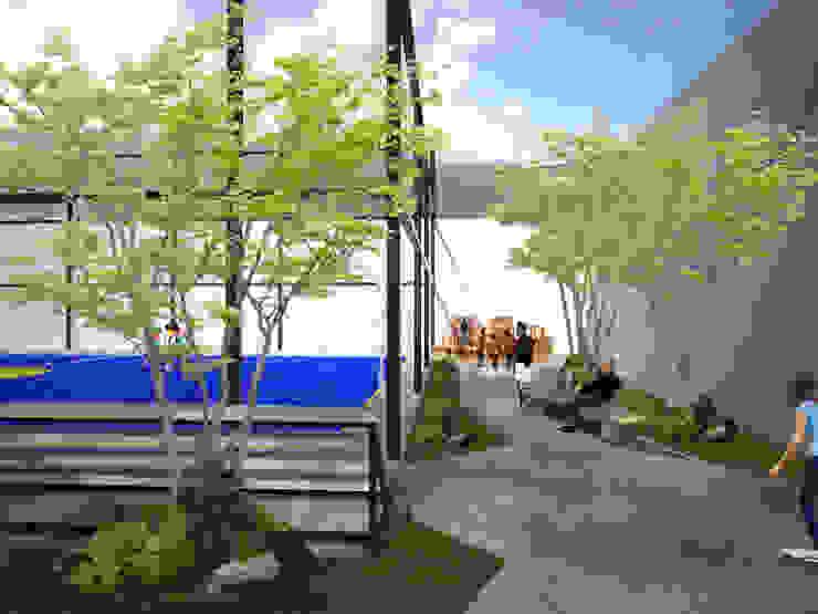 Area de contemplación Balcones y terrazas de estilo moderno de Taller de Desarrollo Urbano Moderno