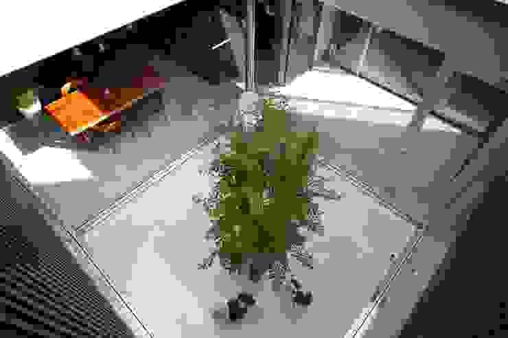 Jardines modernos de 藤井伸介建築設計室 Moderno