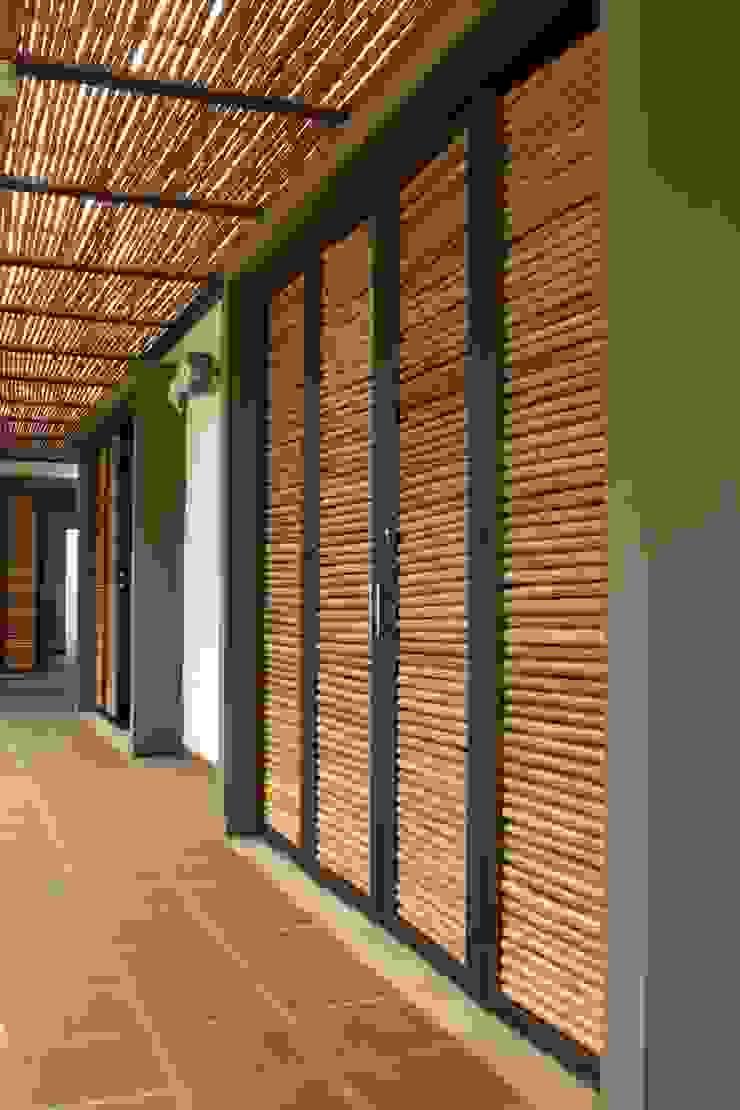 Pérgolas y puertas en Bambú Puertas y ventanas de estilo rústico de A-CUATTRO ARQUITECTURA Rústico