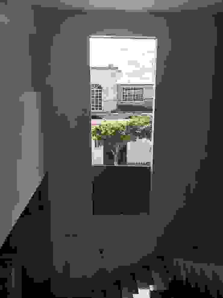 mucha luz Ma&Co Puertas y ventanas minimalistas Aluminio/Cinc