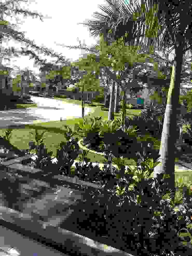 House Swaziland Modern Garden by Principia Design Modern