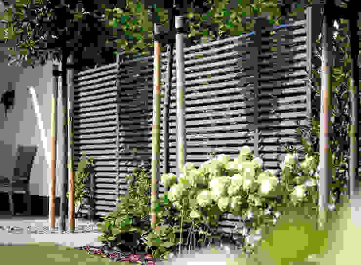 Braun & Würfele - Holz im Garten Modern houses Wood Grey