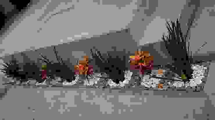Garden by H+R ARQUITECTOS, Modern