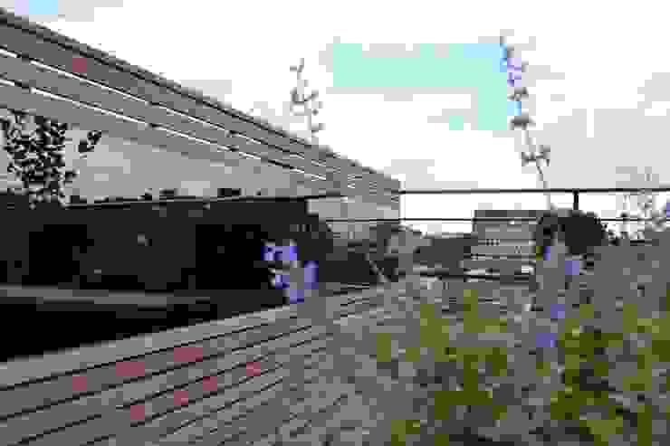 Ganton Street Roof Terrace by Aralia Modern Glass