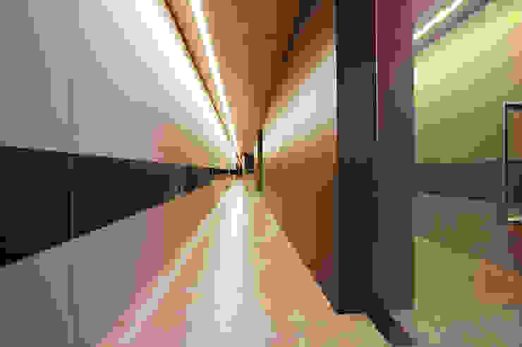 바나나피쉬 Modern corridor, hallway & stairs