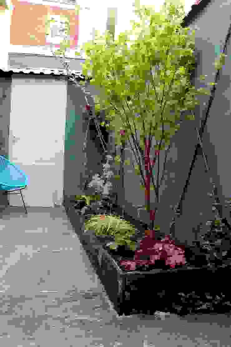 Jardinière tout en longueur Jardin asiatique par Constans Paysage Asiatique