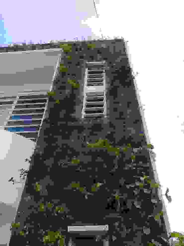 Modern walls & floors by Elementum Arquitectos SAS Modern