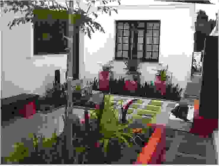 Small garden sapces Modern Garden by Young Landscape Design Studio Modern