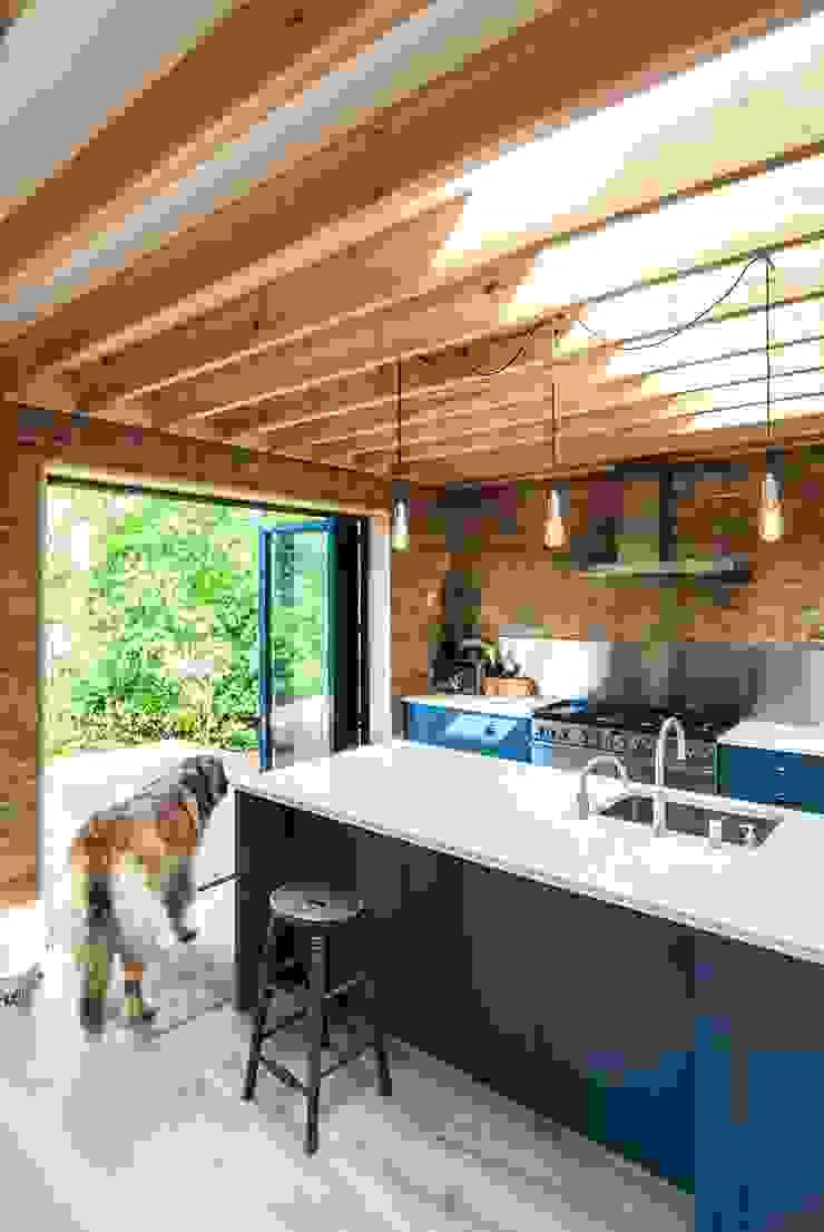 Epsom Cuisine moderne par Bradley Van Der Straeten Architects Moderne