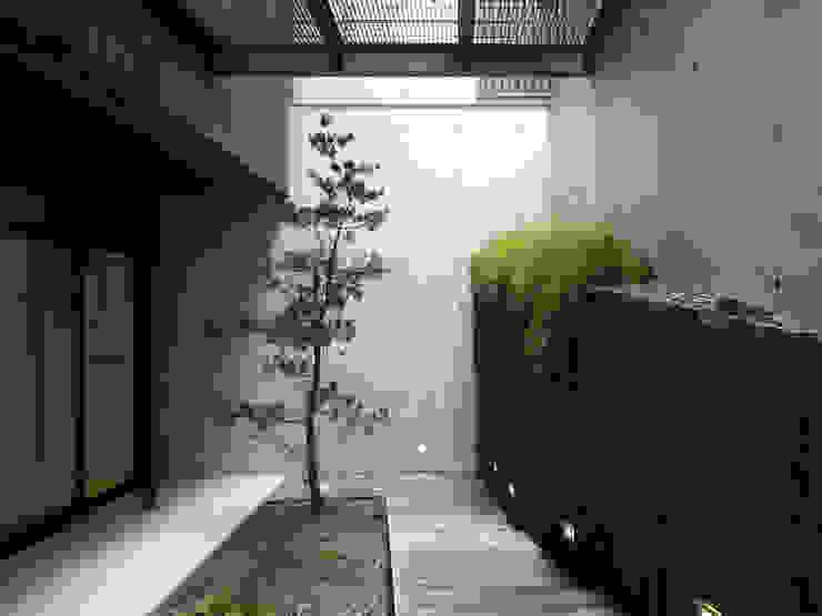 Modern garden by 構築設計 Modern